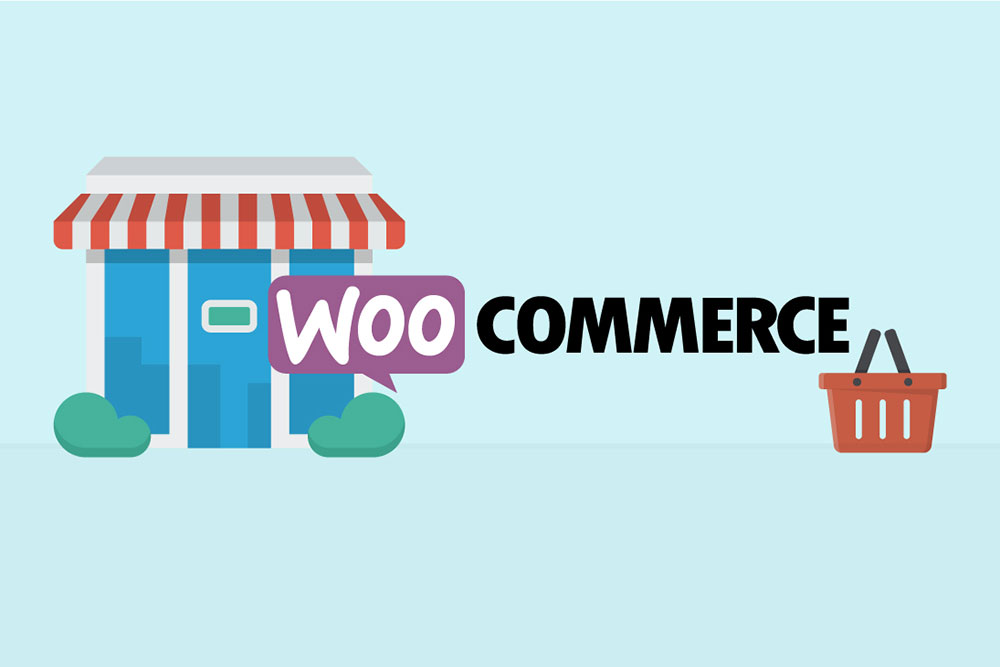 WooCommerce themes, WordPress websites by Rapid Websites